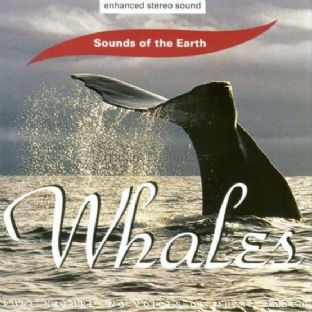David Sun CD - Sounds of the Earth: Whales